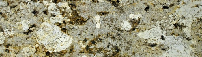exotic granite color Copenhagen displays a dramatic pattern